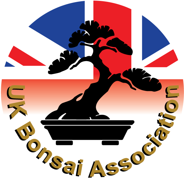 UK Bonsai Association