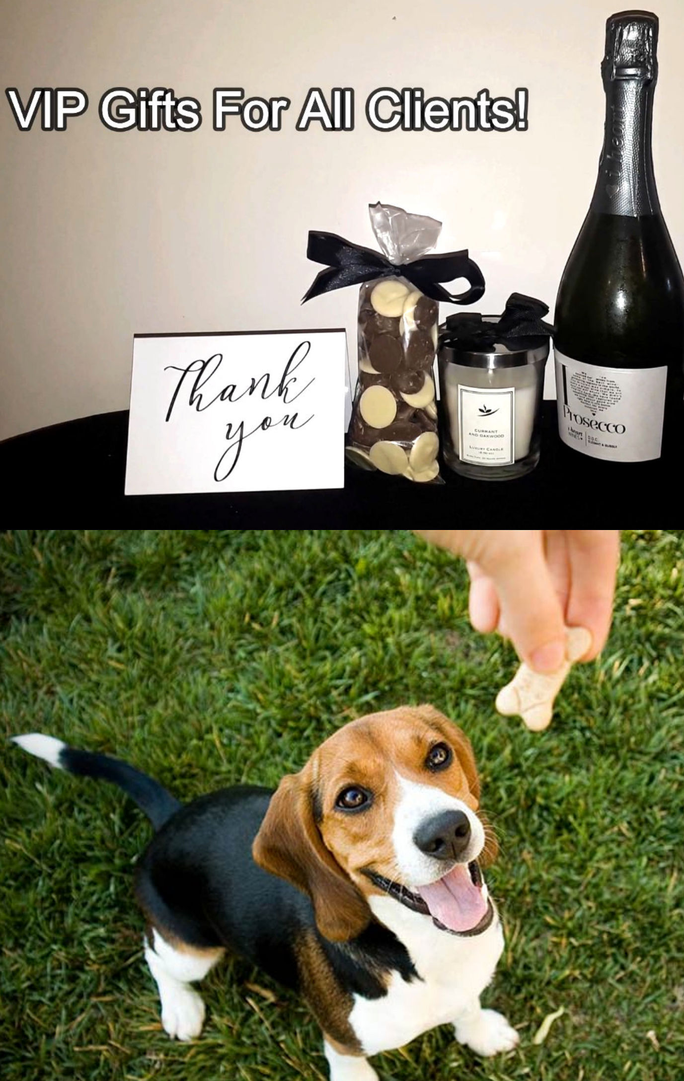 vip gifts for clients and pets