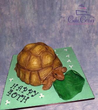 Tortoise Cake