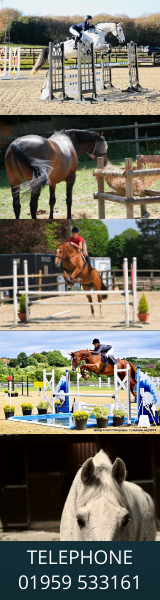 Pine Ridge Equestrian