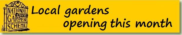 Opens NGS openings pdf