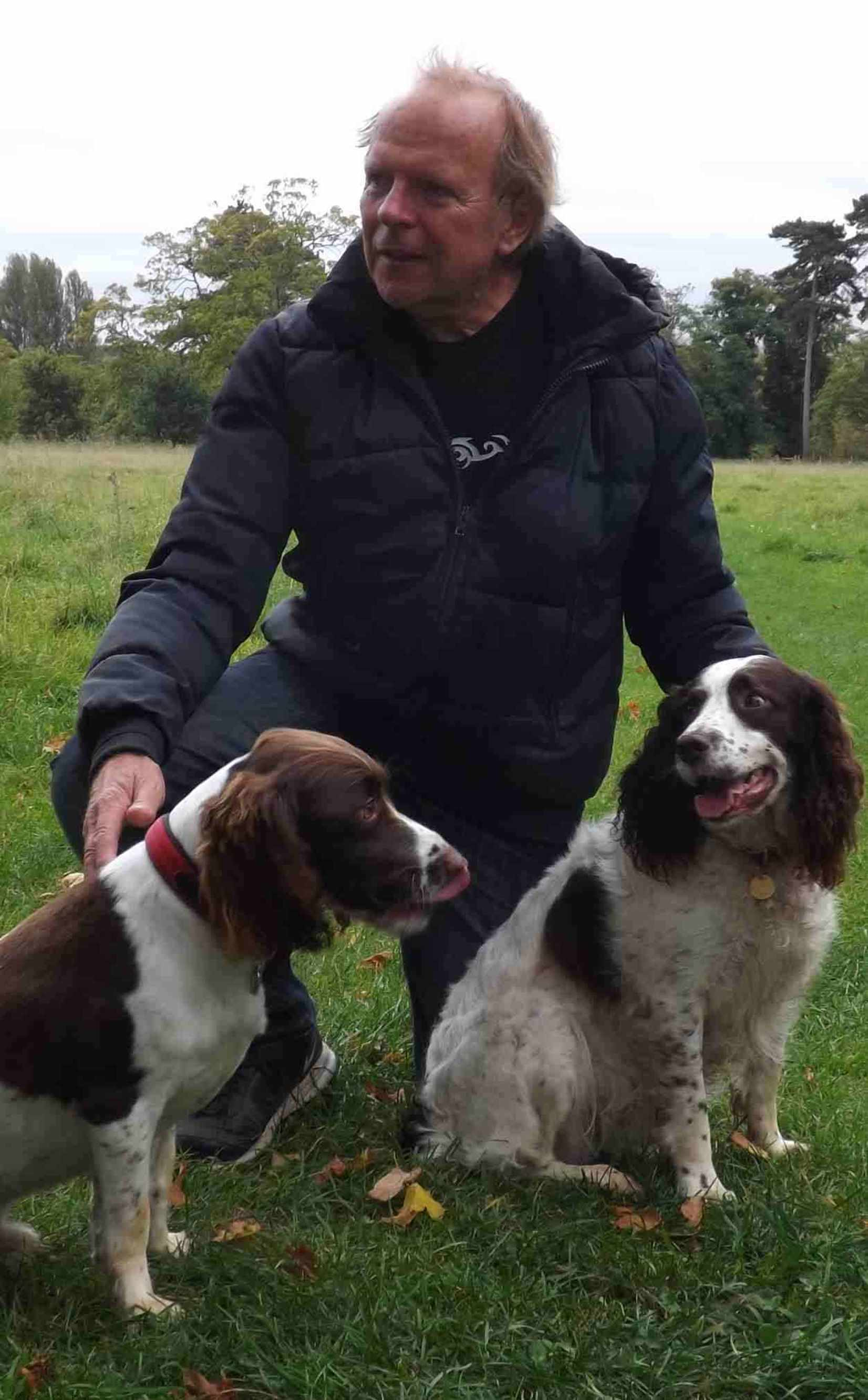 Springer Spaniels with Derrick