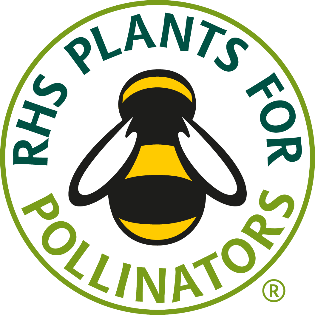 Link to RHS Plants for Pollinators