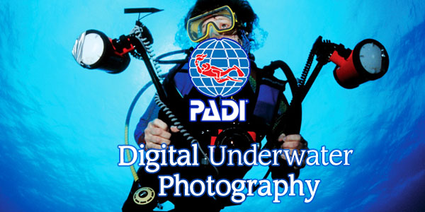 underwater Digital Photography