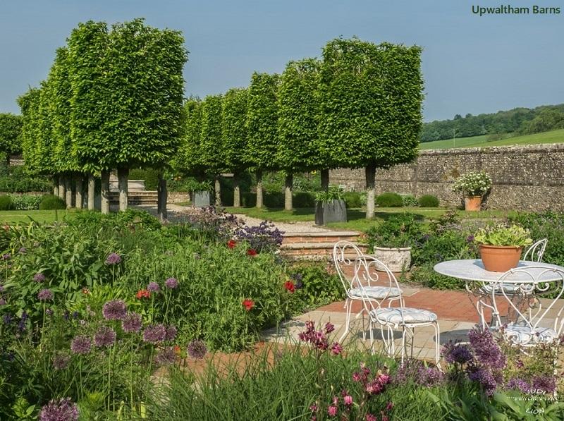 Gardens at Upwaltham Barns