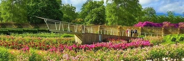 Link to Savill Garden website