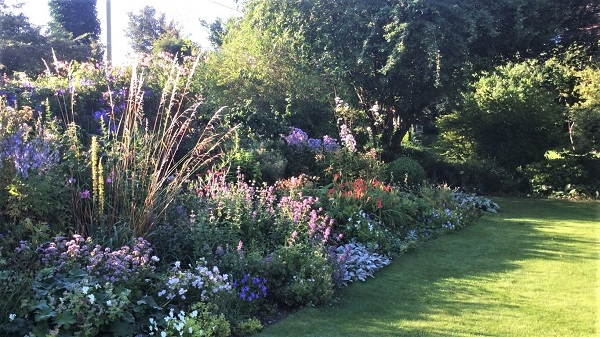 Link to Little Court garden NGS webpage
