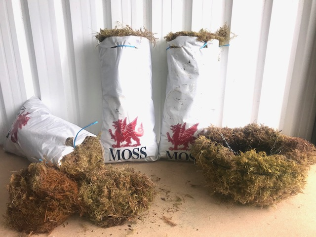 Moss for baskets and racks