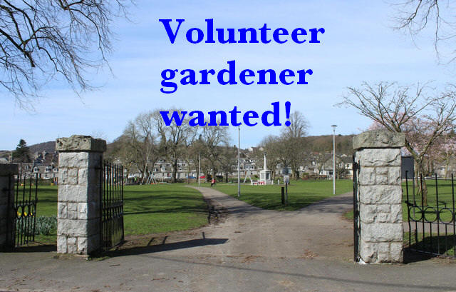 Volunteer gardener wantedjpg