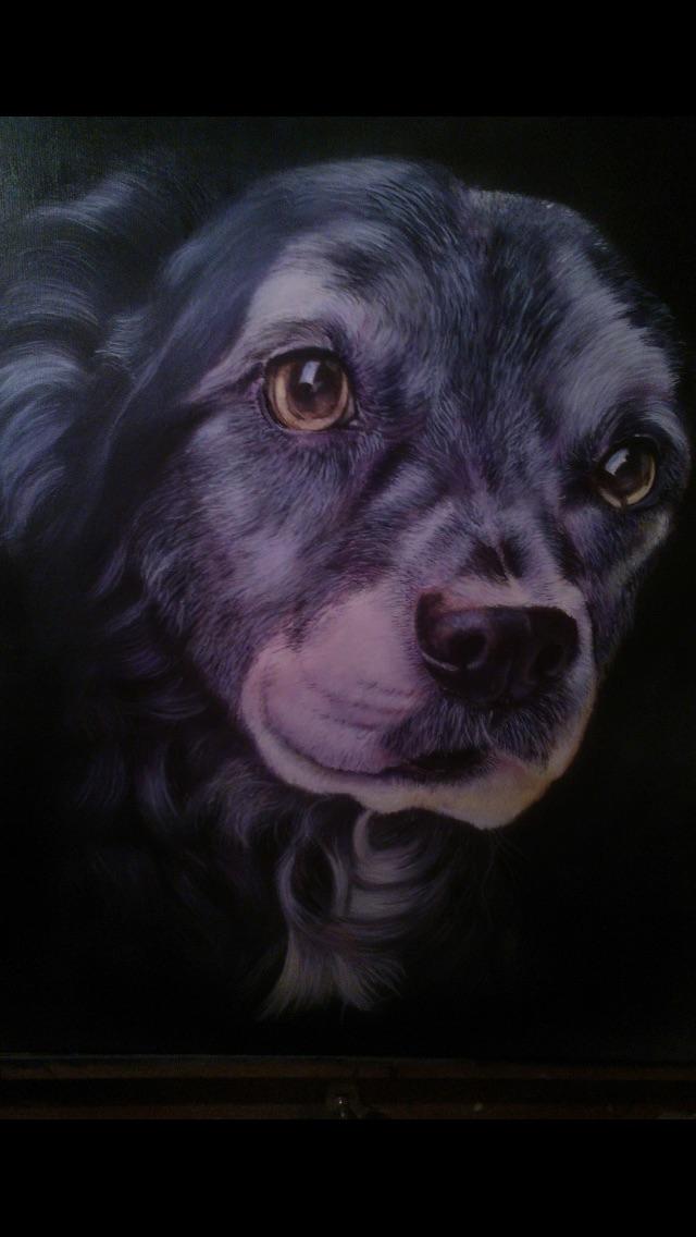Pet Portraits Oil /& Acrylic