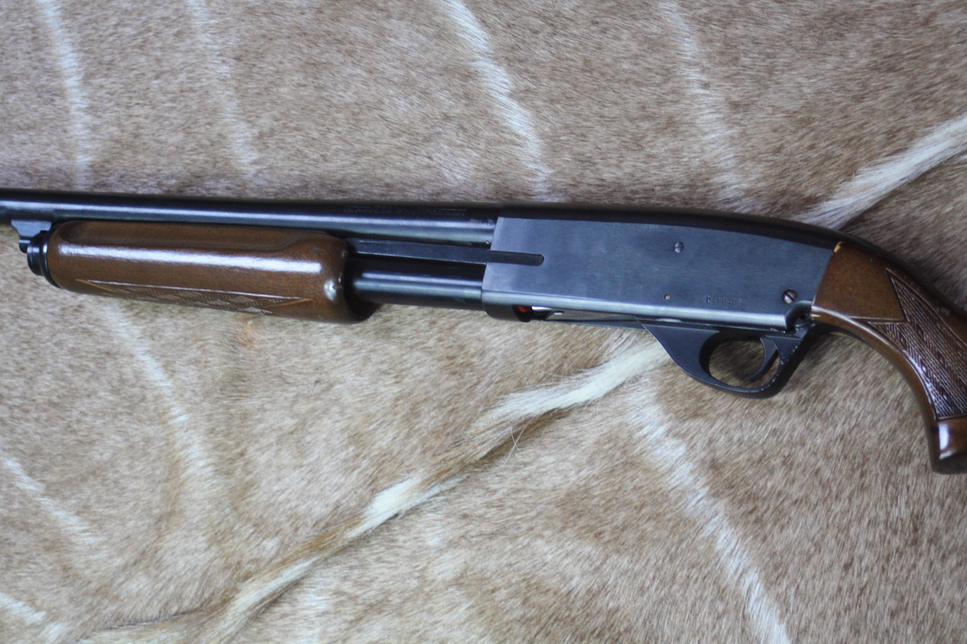 12 bore Stevens Model 67 Series E pump action