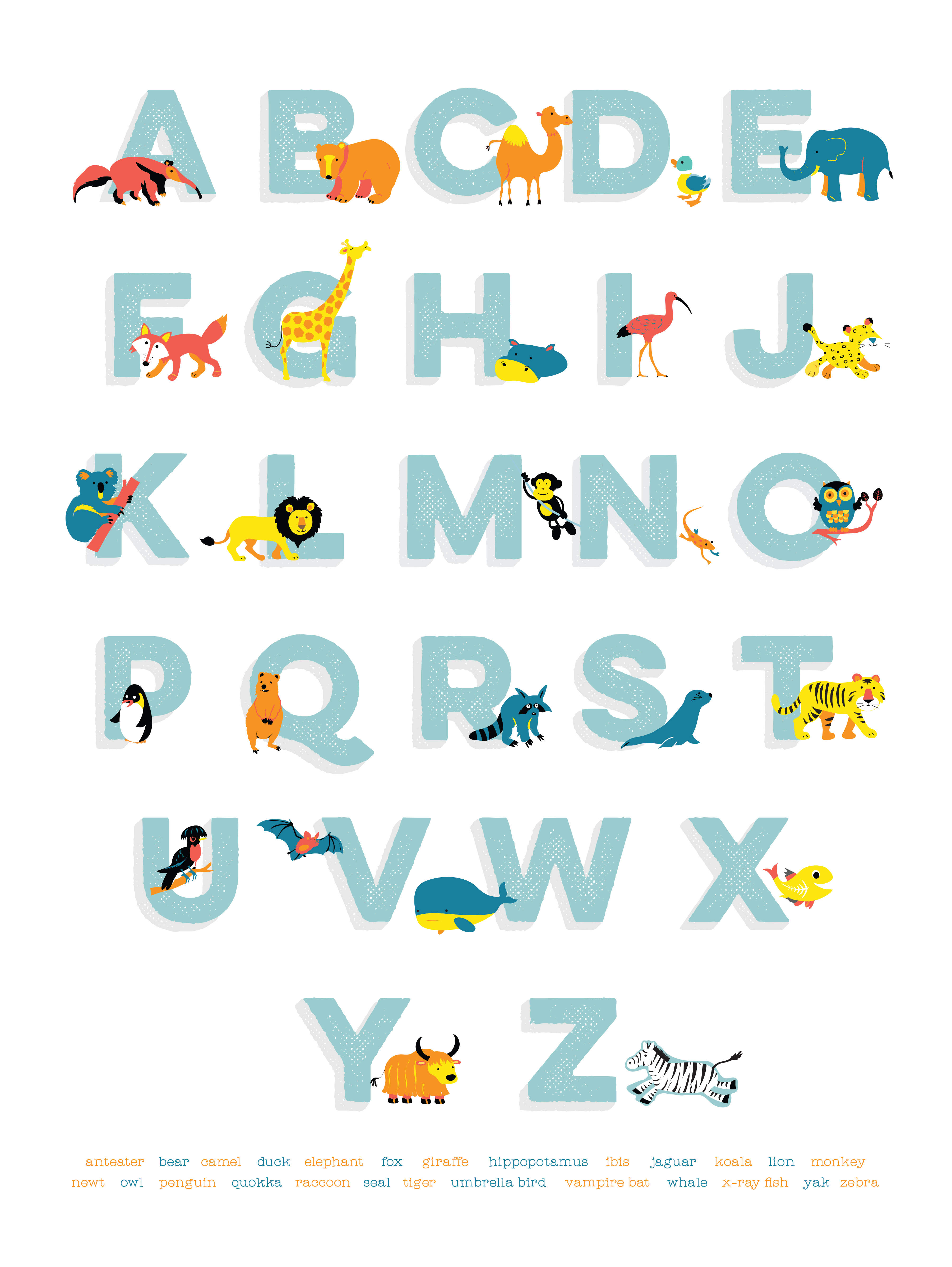 Animal Alphabet : Full Colour