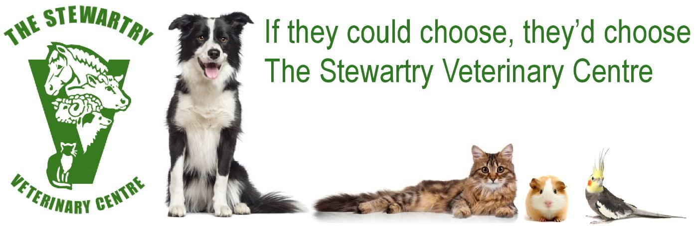 The Stewartry Veterinary Centre Castle Douglas