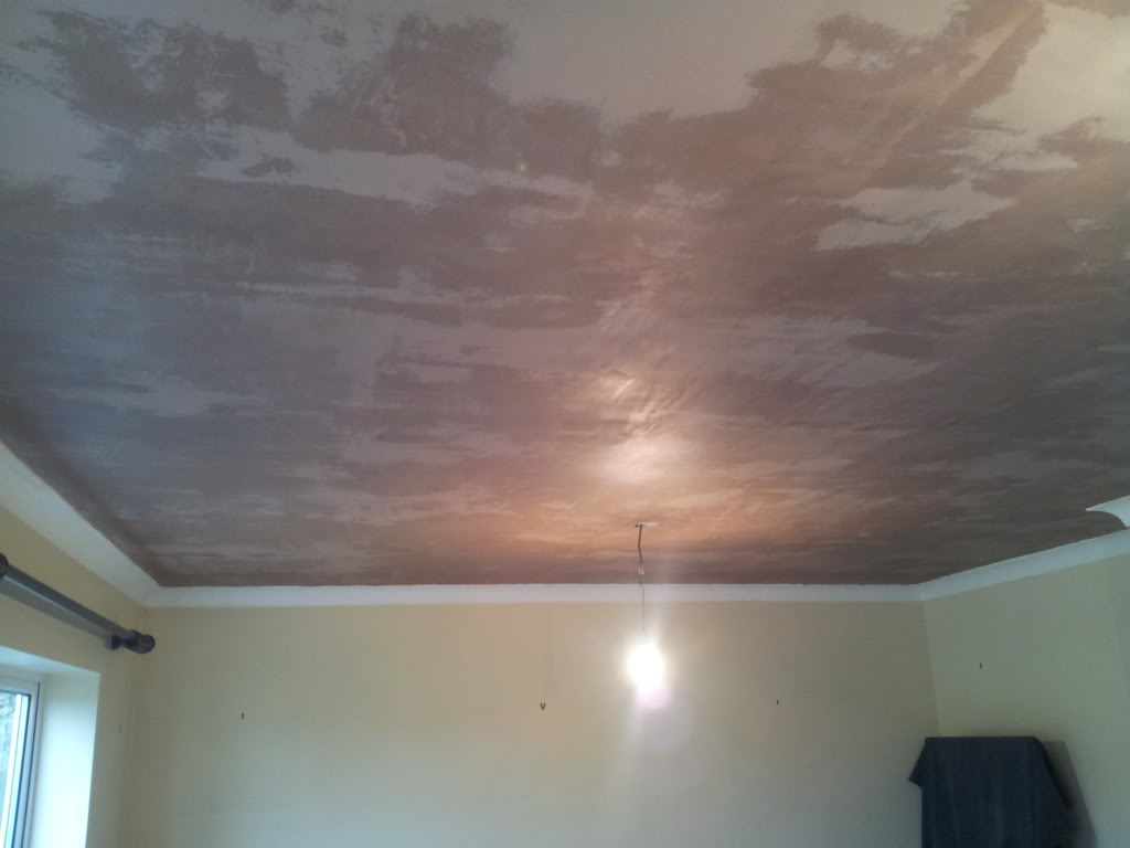 skimed ceiling  wet