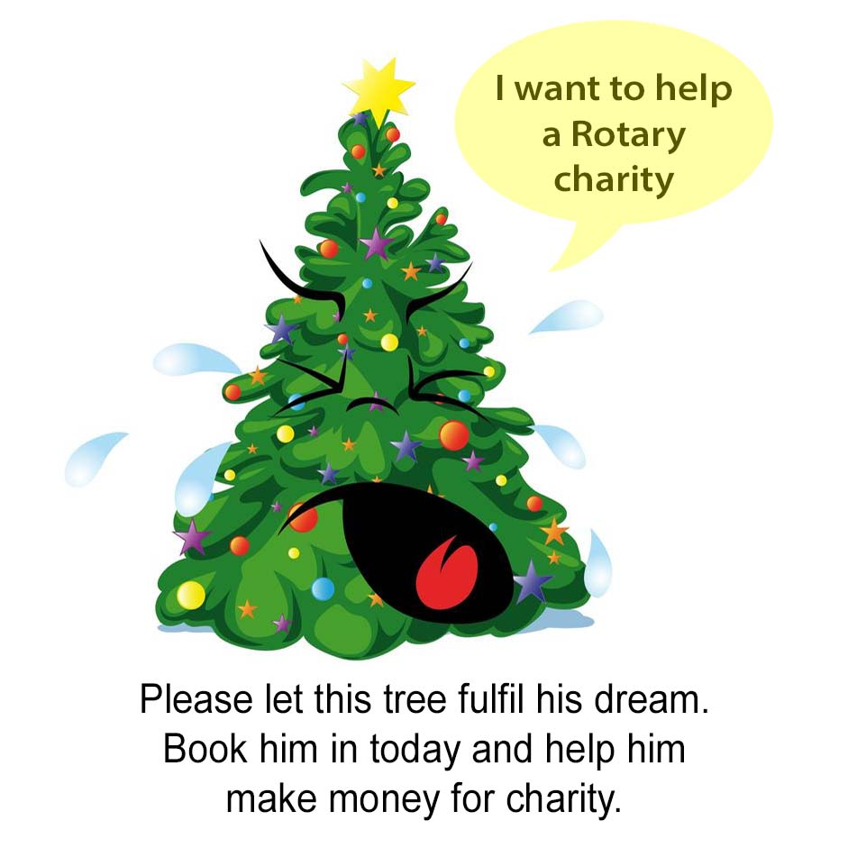 Louth charity christmas tree collection