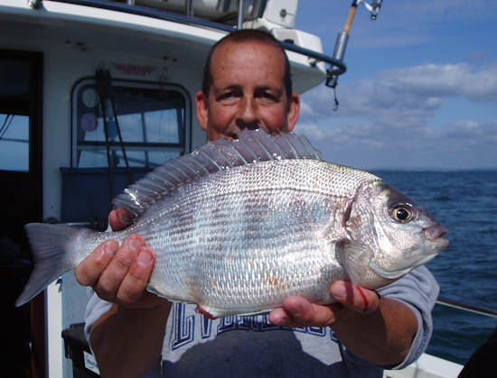 Bream fishing spirit of arun littlehampton