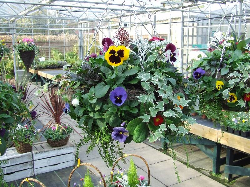 Winter Baskets