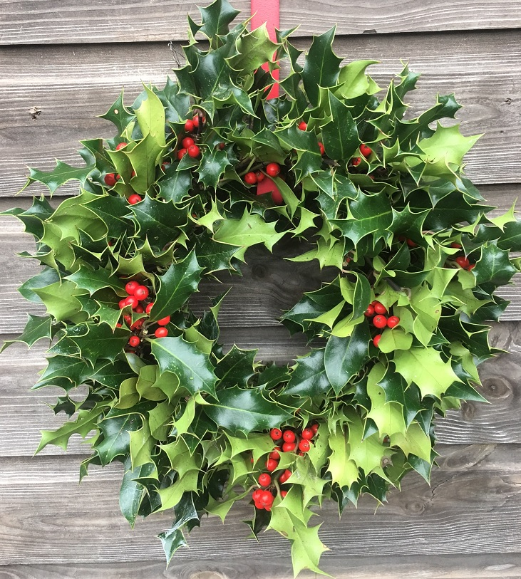 10 Inch Holly Wreath