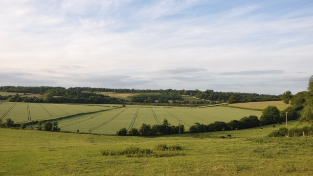 View over fields Hanborough