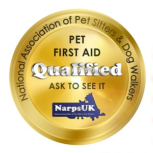 Pet First Aid Qualified Dog Walkers & Pet Sitters