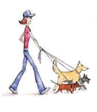 Dog walking Oxfordshire and Bershire