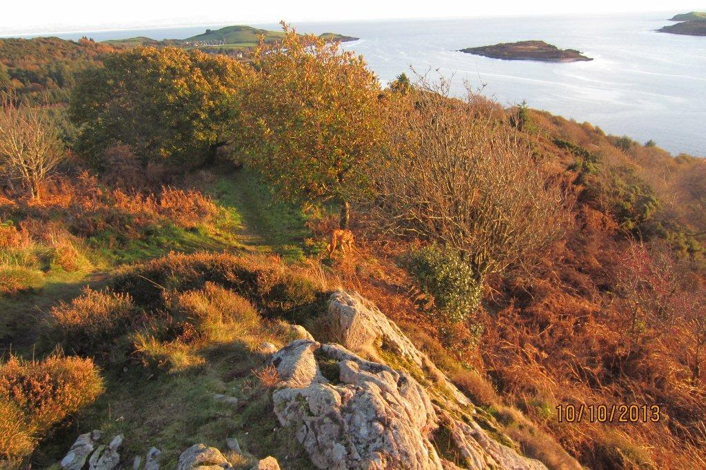 Glorious colours in this autumnal shot of the countryside around Kippford.