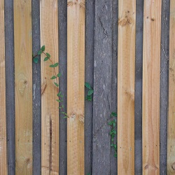 Fencing Haslemere, Liphook, Midhurst 1