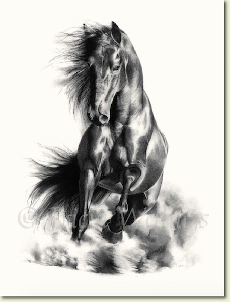 Horse portrait kicking up a sandstorm by Tricia Wellings