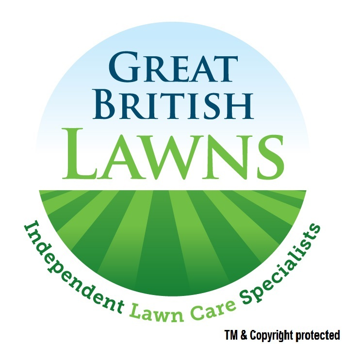 Great british lawns surrey lawn care service for Lawn care professionals