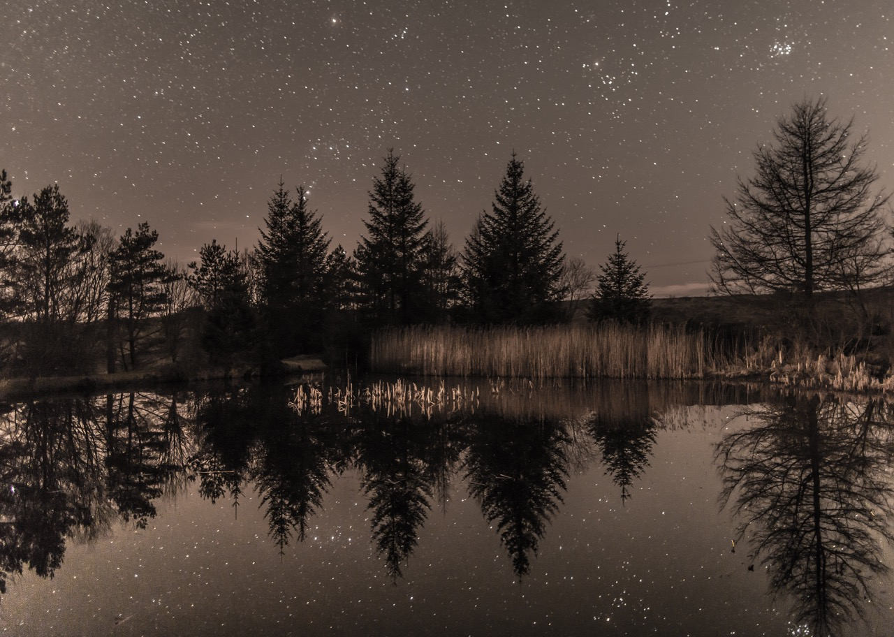Campsite pond on a starry night.