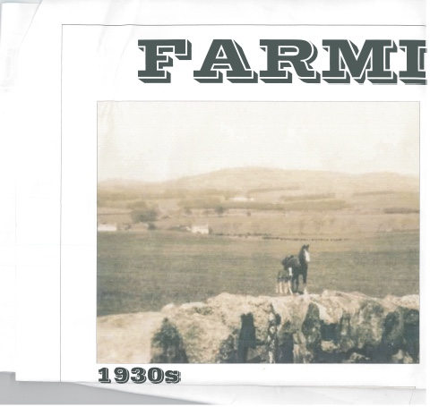 Farming in the 1930s showing a horse on the farm