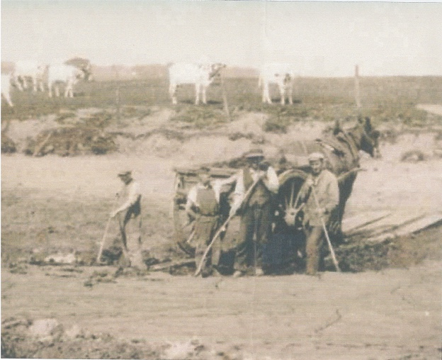 Farm workers in the fields with a horse and cart