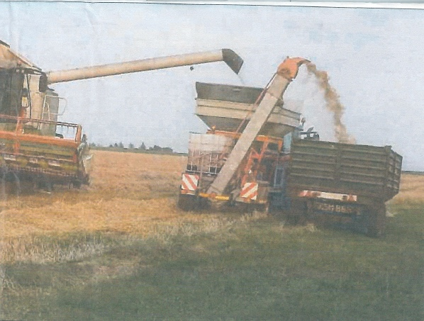 Harvesting at Kirkbean