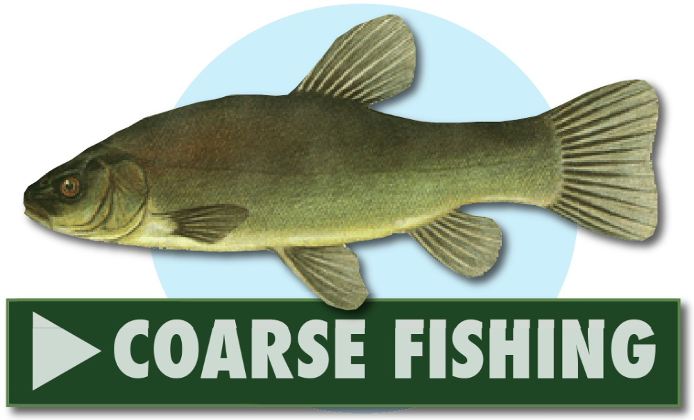 Coarse fishing at Greenhill Fishery, Dalbeattie, Dumfries and Galloway, Scotland