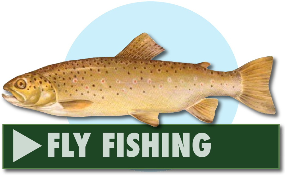 Fly fishing at Greenhill Fishery, Dalbeattie, Dumfries and Galloway, Scotland