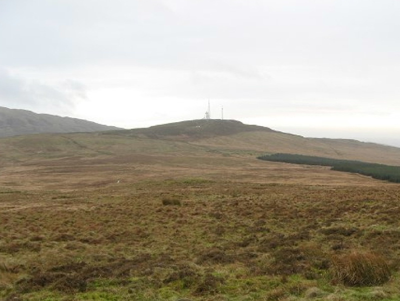 Glenquicken Moor, a great place for spotting hares and numerous bird species