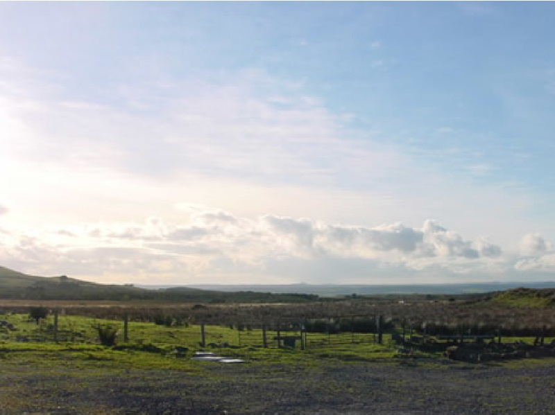 The view from Glenquicken Farm's self catering holiday cottages