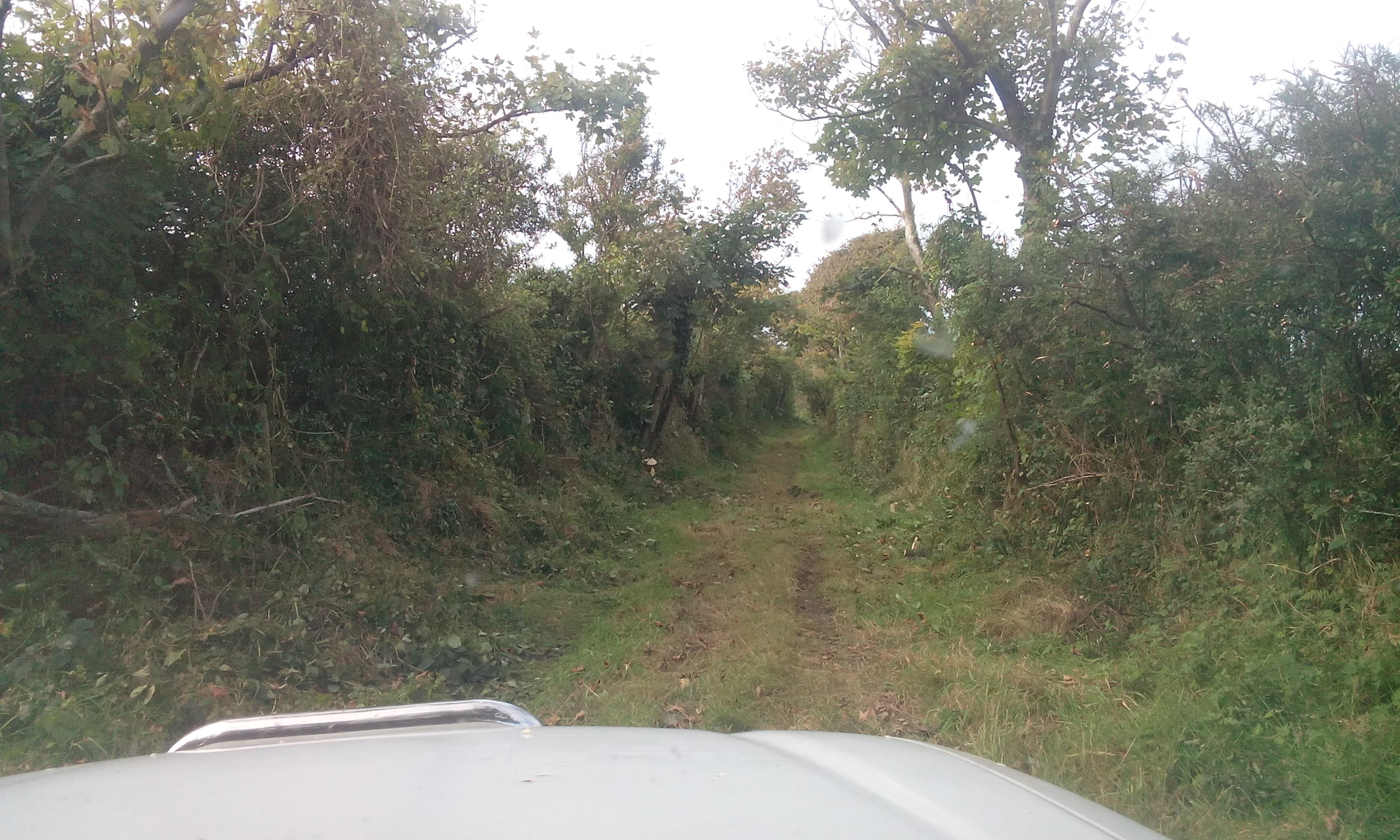 bridleway near mathry cleared for vehicle access