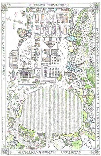 Hand drawn map of garden