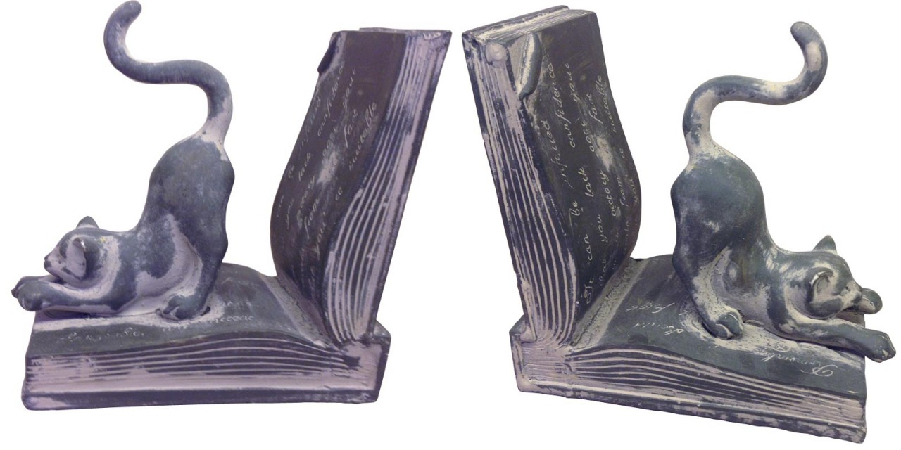 Cat in book bookends
