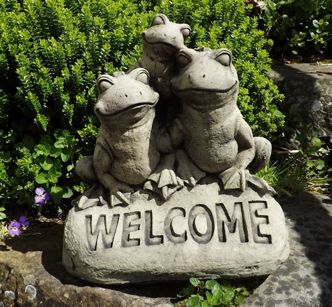 'Welcome' Frogs