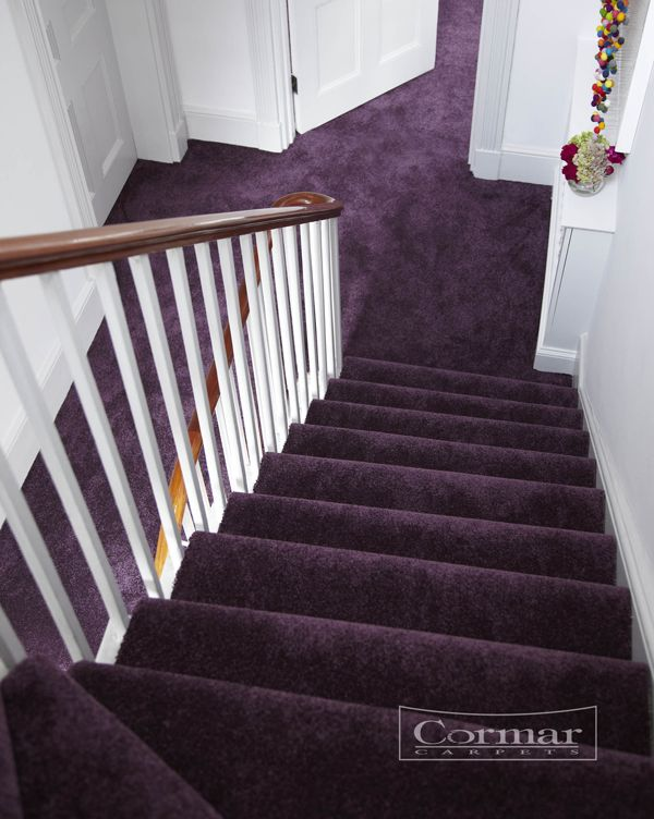 Luxurious purple stair and hall carpeting by Cormar Carpets