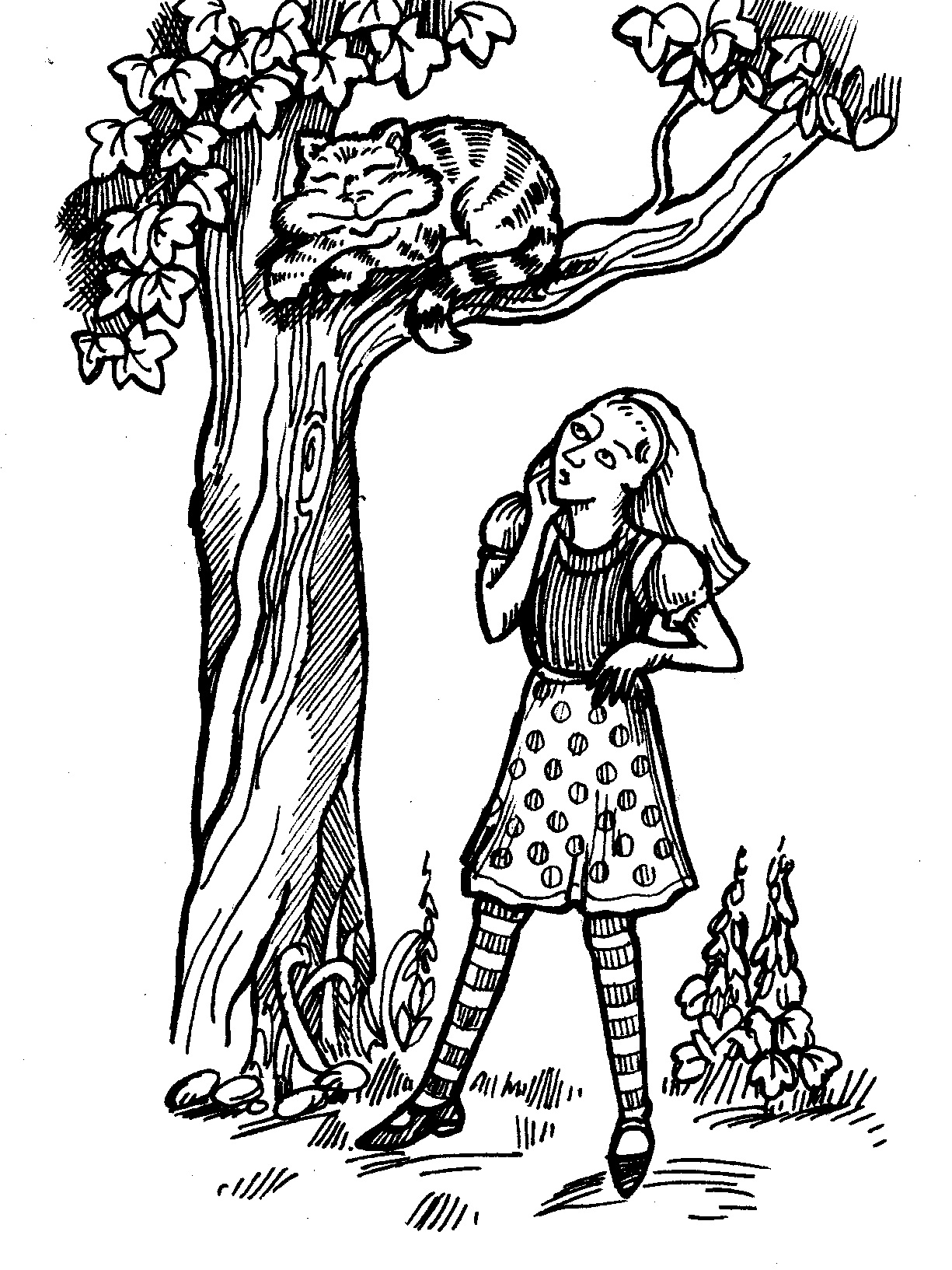 Alice in Wonderland looking up athe cheshire cat.