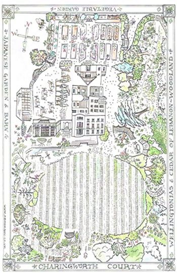 line drawing map of garden
