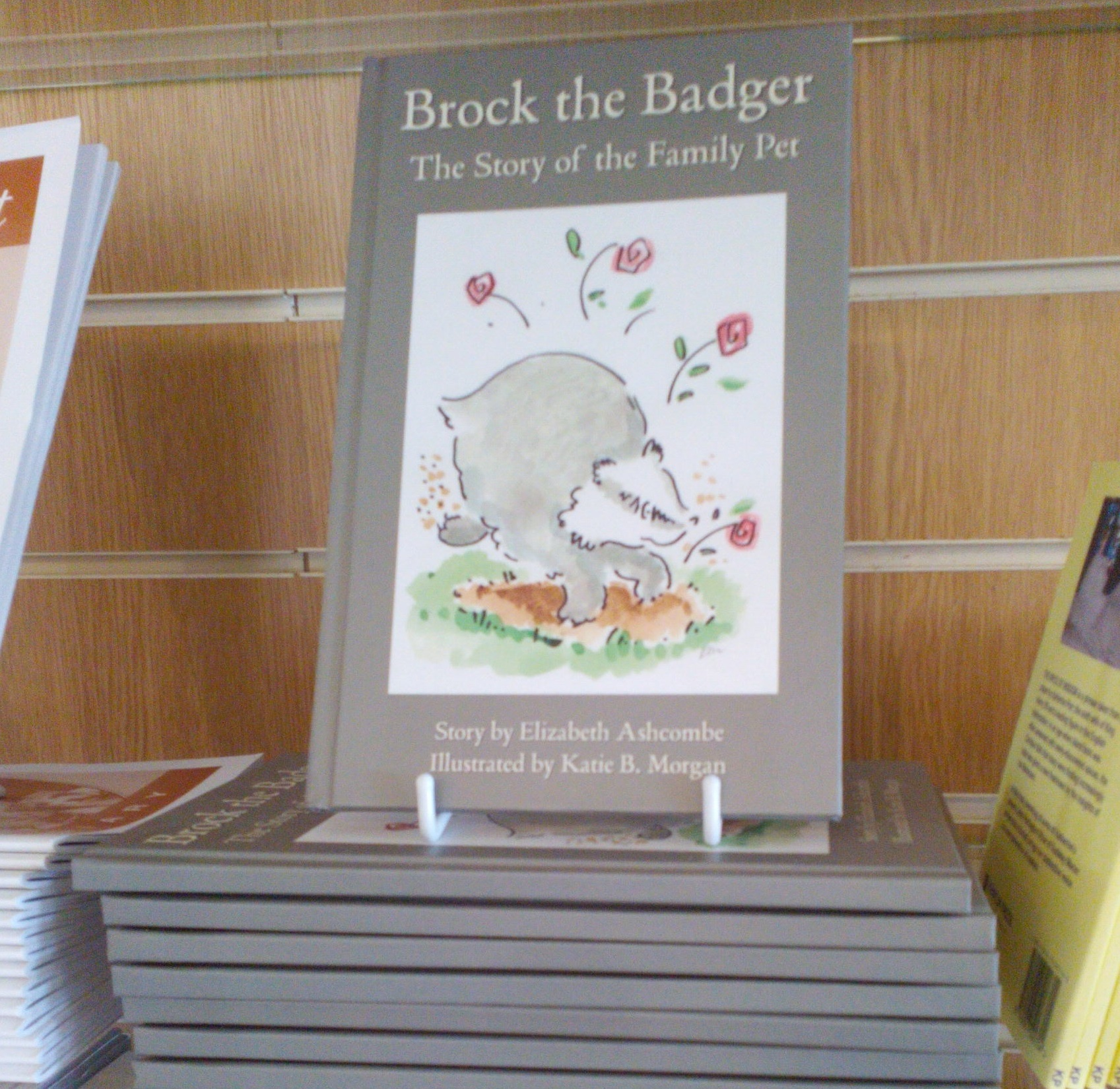 Brock the badger books
