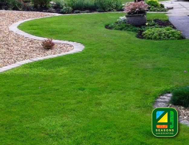 Nothing boring about this garden design with its curves and sweeps
