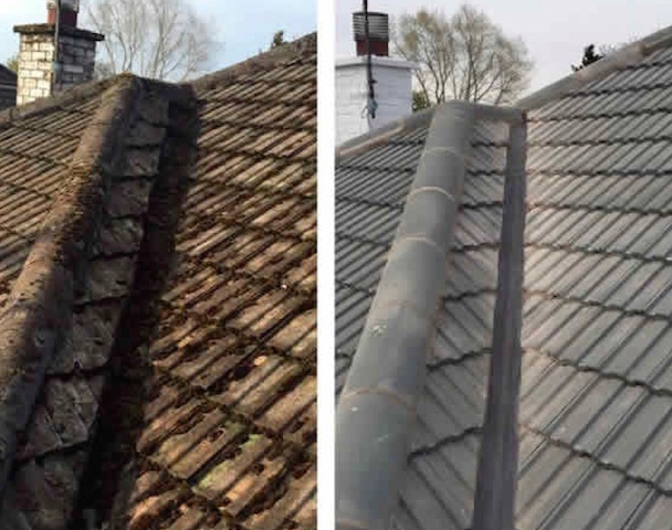 Old moss-covered roof tiles on the left, new roof beautifully cleaned up by Seal It Roofing