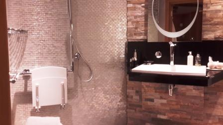 Coesfaen accessible shower+height adjustable sink