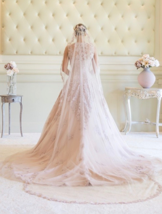 Blush pink wedding dress with lace overlay and illusion bodice, back view