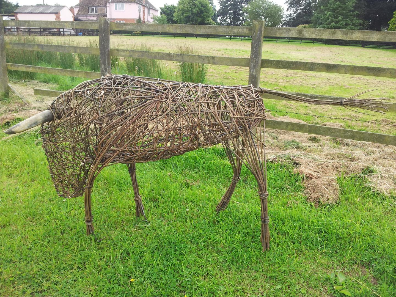 Willow Bull